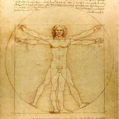 Leonardo da Vinci Vitruvian Man Drawing